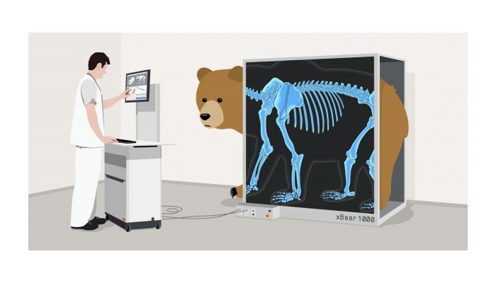 VPNs have a trust issue: Here's what TunnelBear did about it