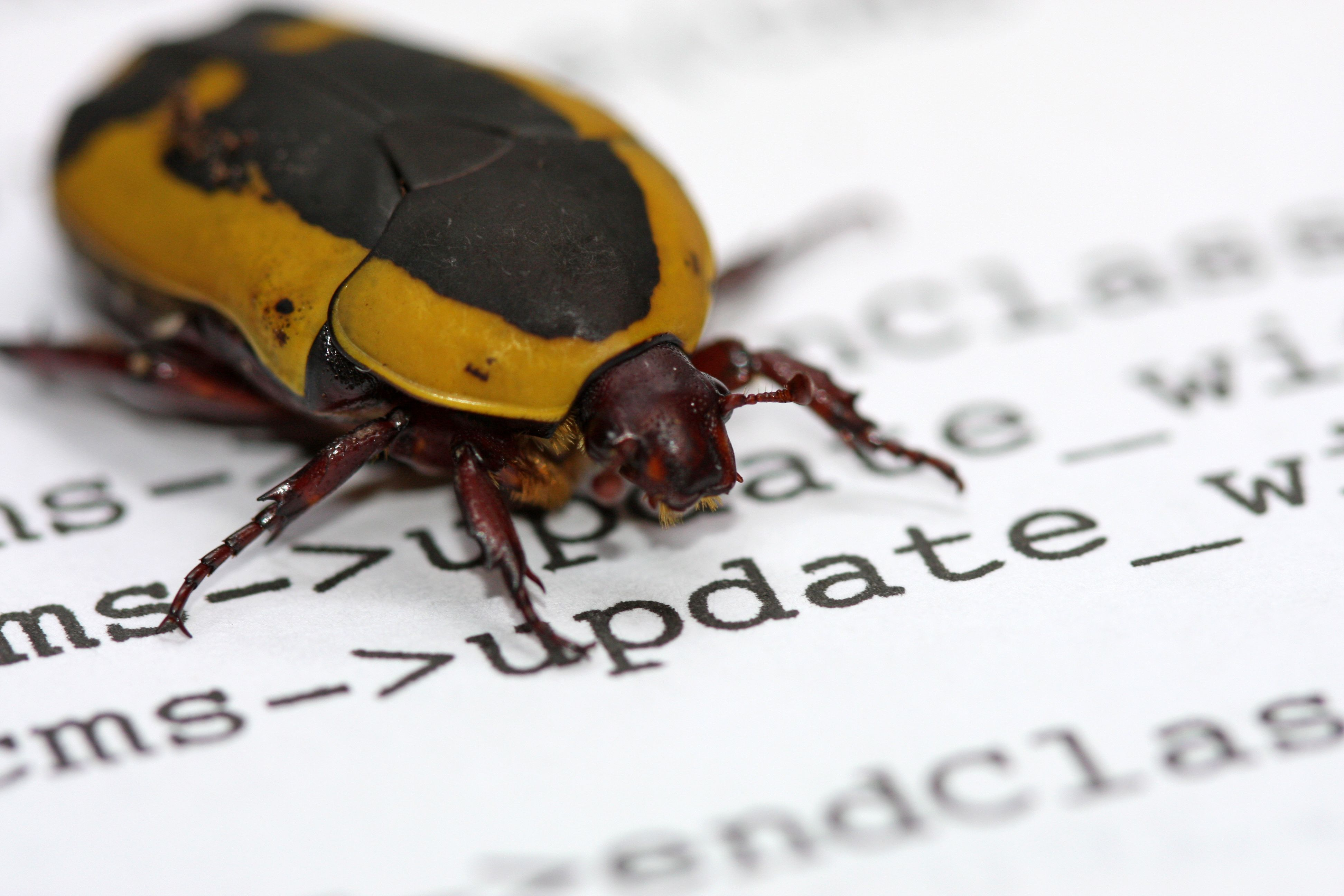 Samba Update Patches Two SMB-Related MiTM Bugs