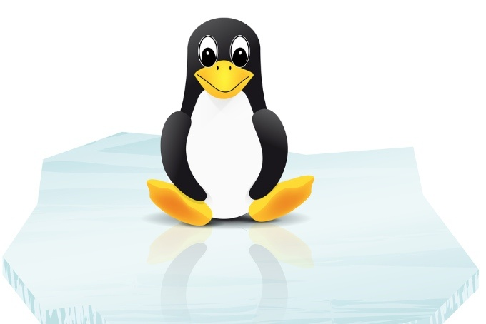 Another Linux Kernel Bug Surfaces, Allowing Root Access