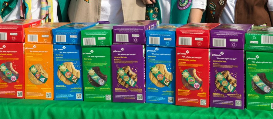 Girl Scouts Issues Data Breach Warning to 2,800 Members