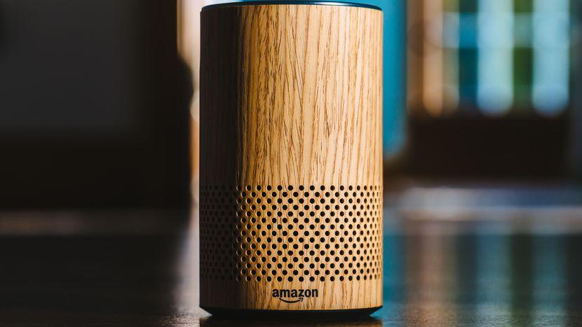 Amazon Auditors Listen to Echo Recordings, Report Says
